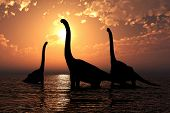 Brachiosaurus At Sunset