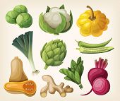 foto of butternut  - Set of exotic vegetables - JPG