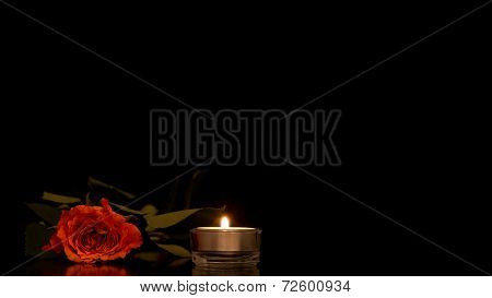 Single Romantic Orange Rose With A Burning Candle