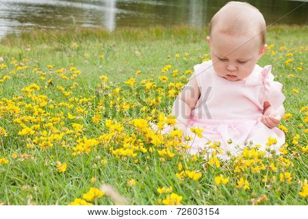 Baby And Buttercups