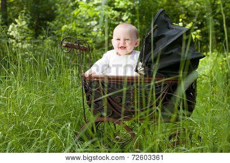 Baby In Vintage Pram