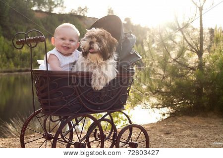 Baby And Little Puppy In Apram