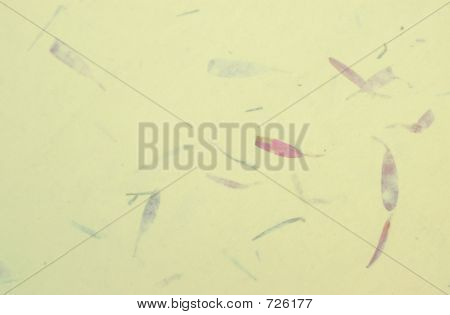 Oriental Rice Paper Background Yellow