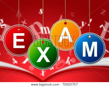 Exam Kids Indicates Youngster Toddlers And Quiz