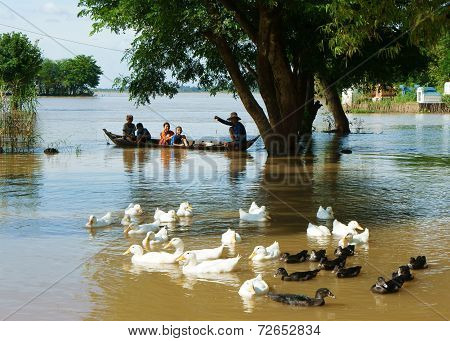 Child, Row Boat, Duck, Vietnamese Countryside