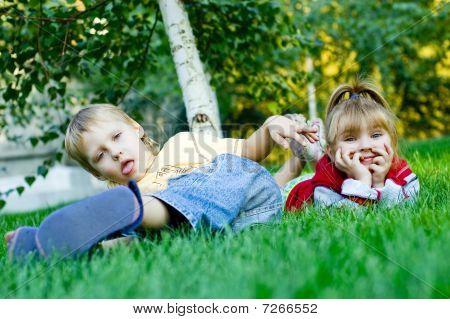 Mischievous Little Pigeon Pair On A Green Grass