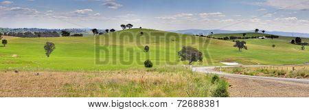 Hills Of Mandurama Landscape