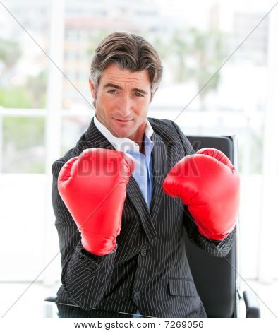 Self-assured Businessman Wearing Boxing Gloves