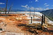 image of mammoth  - Canary Spring of the Mammoth Hot Springs against blue sky in Yellowstone National Park - JPG