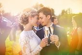 stock photo of romantic  - Young newlyweds clinking glasses and enjoying romantic moment together at wedding reception outside - JPG