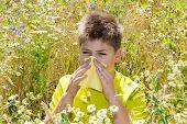 stock photo of rhinitis  - Boy with allergic rhinitis in the meadow - JPG