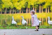 pic of baby goose  - Little Happy Baby Girl Running At A River Shore Chasing Wild Geese In An Autumn Park - JPG