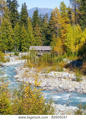 Autumn at Fitzsimmons Creek Whistler