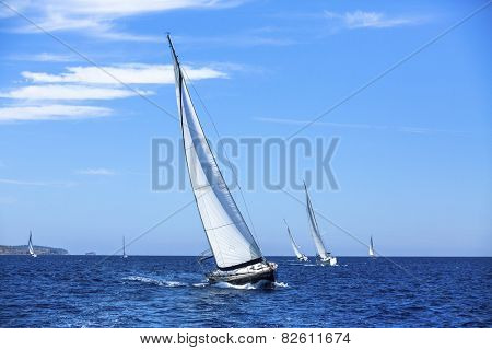 Sailboats in sailing regatta. Sailing. Outdoor lifestyle. Luxury yachts.