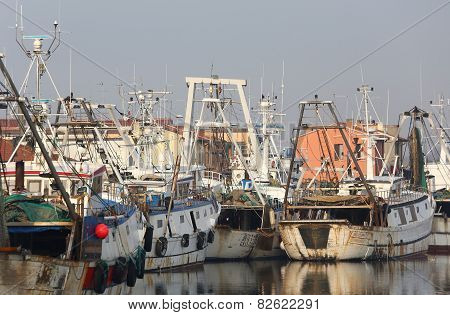 Fishing Vessels In Sea Haven Moored In Italy