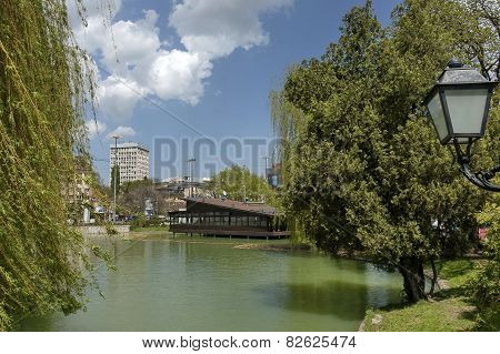 Springtime in the park whit lake and forest