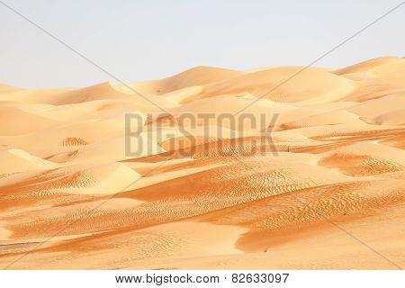 Desert Landscape In Abu Dhabi