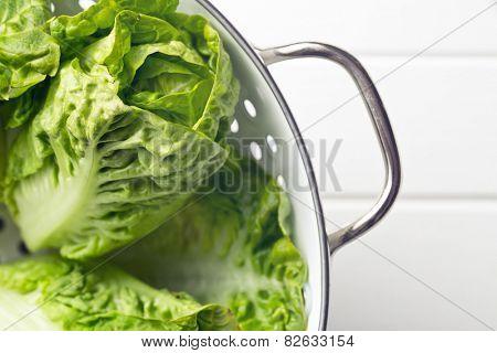 the fresh lettuce in colander