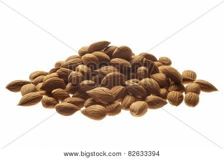 Apricot seeds