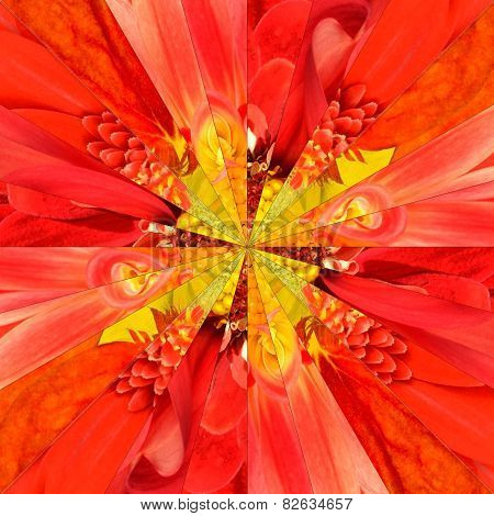 Orange Flower Center Collage Geometric Pattern