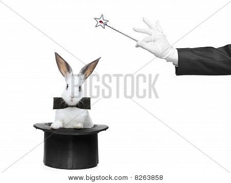 Un conejo de un sombrero y la mano que sostiene una varita mágica