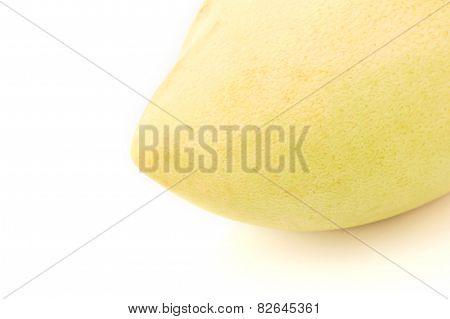 Barracuda Mango