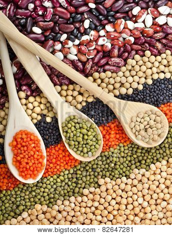 lentils, beans, peas, soybeans, legumes with spoons, textured background