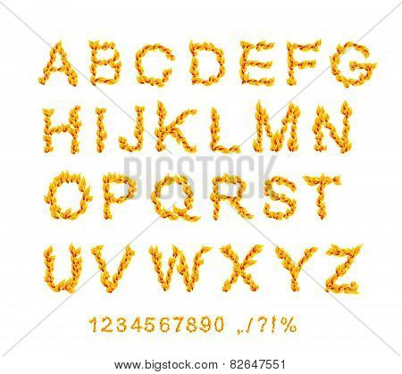 Fire Fonts. Abc Fire Letters Isolated On White Background. Vector Illustration