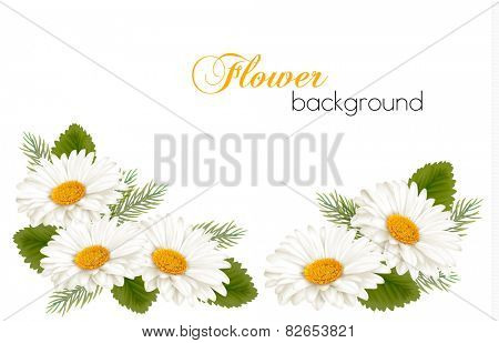 Nature background with white beautiful flowers. Vector illustration