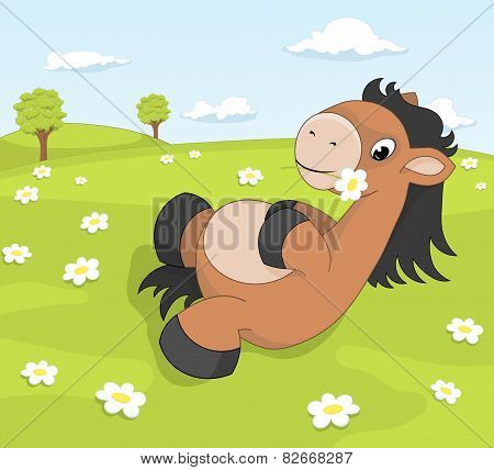 Cute Cartoon Pony On The Blooming Meadow