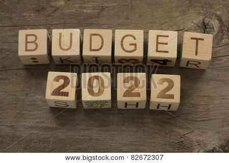Budget for 2022 wooden, blocks on a wooden background