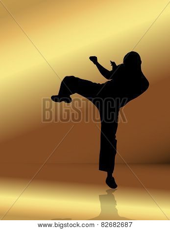 Martial arts. Vector illustration
