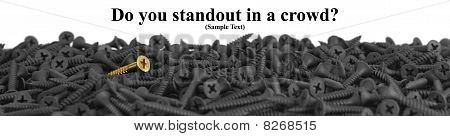 Do You Standout In A Crowd?  Suitable For Website Banner.  Macro Of One Brass Screw In A Pile Of Bla