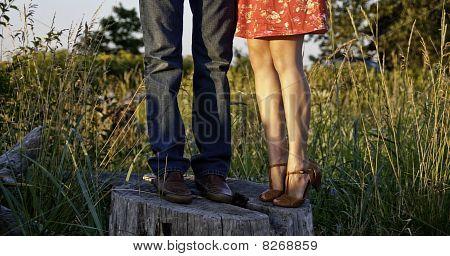 Legs On A Stump
