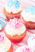 image of sugarpaste  - delicious cupcakes dessert served for big party - JPG