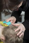 image of lice  - Mother checking childs head for lice with a comb - JPG