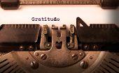 picture of gratitude  - Vintage inscription made by old typewriter gratitude - JPG