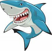 foto of great white shark  - Vector illustration - JPG