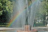 pic of fountain grass  - Beautiful fountain with rainbow in public garden - JPG