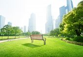 picture of pews  - bench in park - JPG