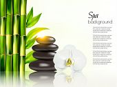 image of bamboo leaves  - Spa background with bamboo and stones - JPG