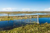 stock photo of flood  - Flooded nature reserve and a crooked steel gate reflected in the mirros smooth water and ice surface on a clear and sunny day in winter - JPG