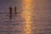 picture of paddling  - Two paddlesurfers with crossing paddles in silhouette at sunset. ** Note: Visible grain at 100%, best at smaller sizes - JPG
