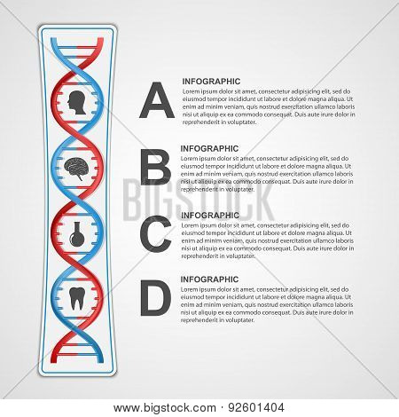 Infographics In The Dna Helix Form. Vector Design Element.