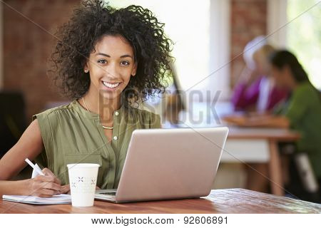 Woman Working At Laptop In Contemporary Office