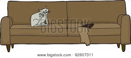 Scratching Cat On Damaged Sofa