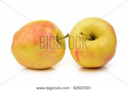 Ripe Apple On White Background