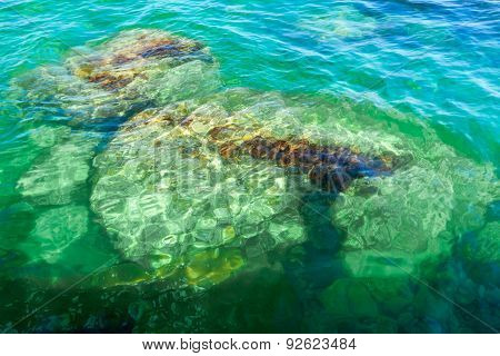 Stones In Seawater