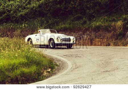 old car NASH HEALEY Sports 3850 cc Spider 1951   mille miglia 2015