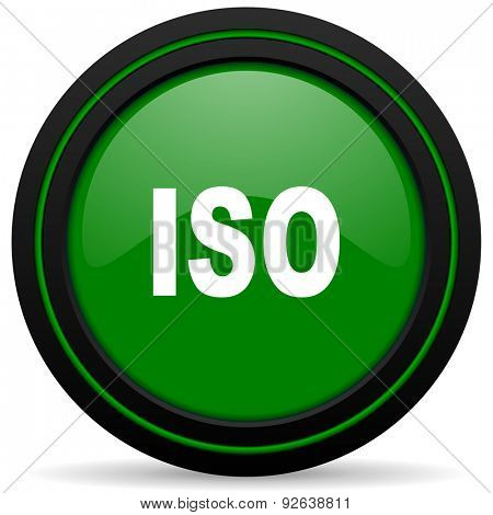 iso green icon